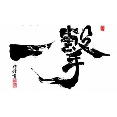 KYOKUSHINKAI (ичи-геки)